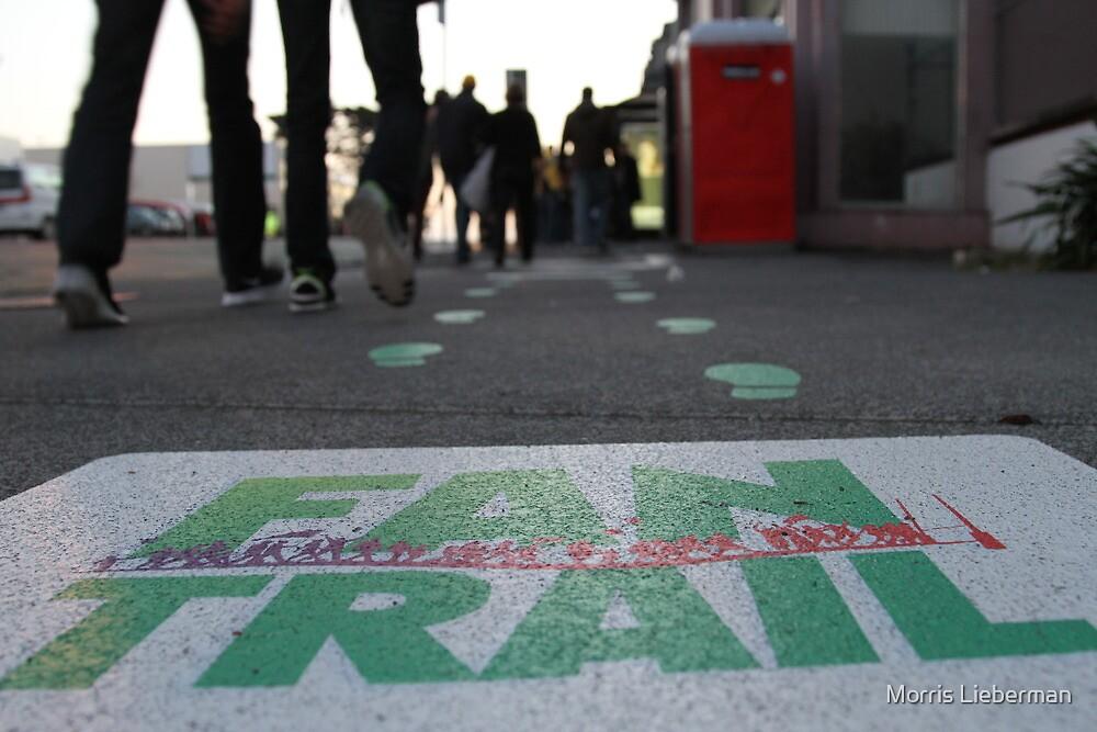 """""""Fan Trail"""", World Cup NZ by Morris Lieberman"""