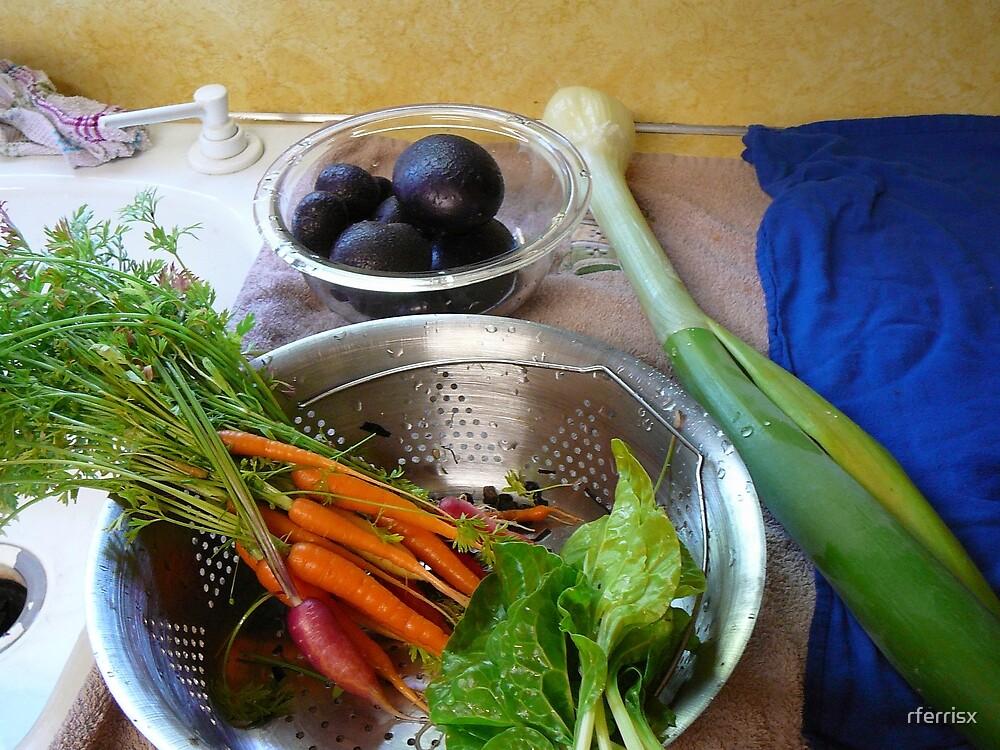 Produce from the fertile earth by rferrisx