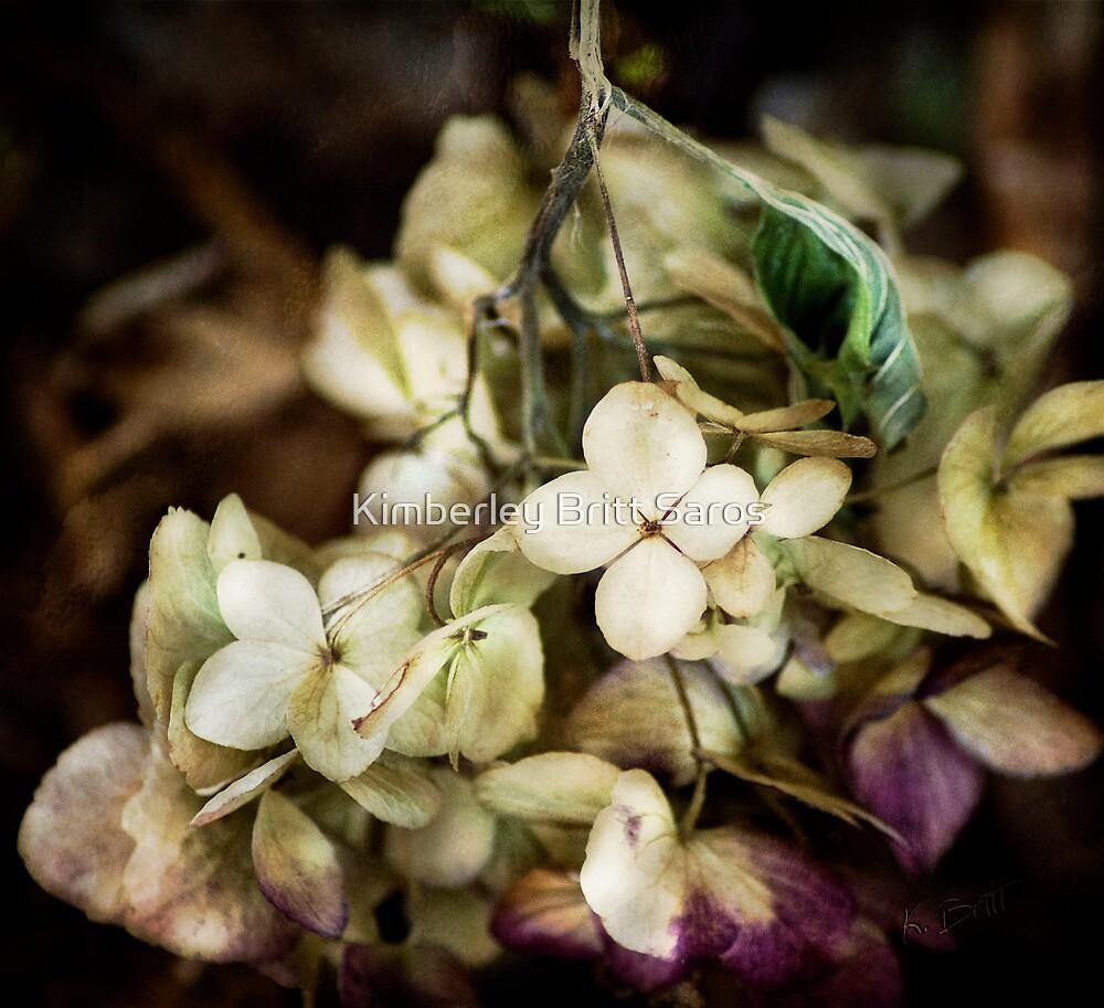 The Last Bloom by KBritt