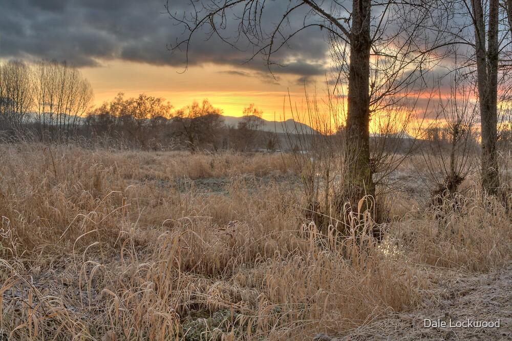 Sunrise in the Marsh by Dale Lockwood
