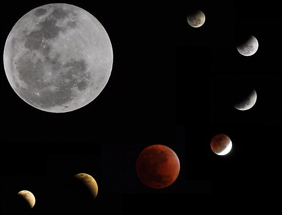 Phases of the moon _ Lunar eclipse 10.12.11 by Shubd