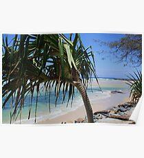 kingscliff beach ... Poster