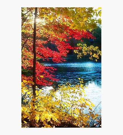 The Glory of a New England Autumn Photographic Print