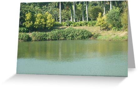 A peaceful little lagoon. by Joseph Green