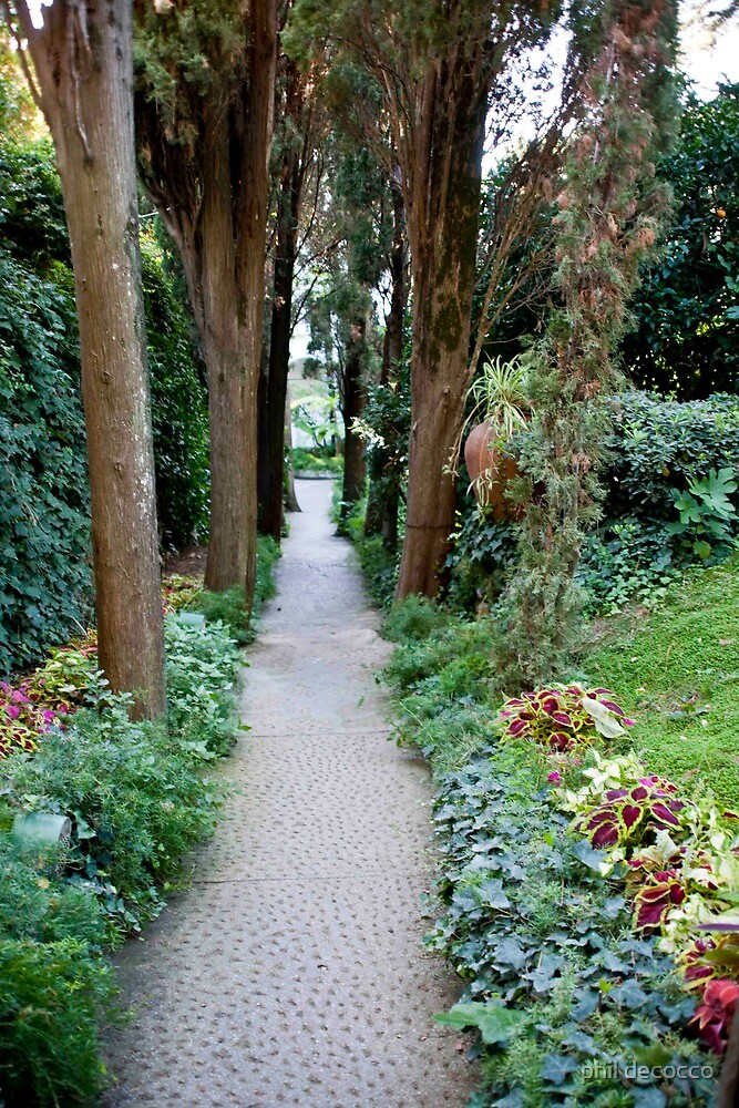 Garden Walkway, Anacapri by phil decocco