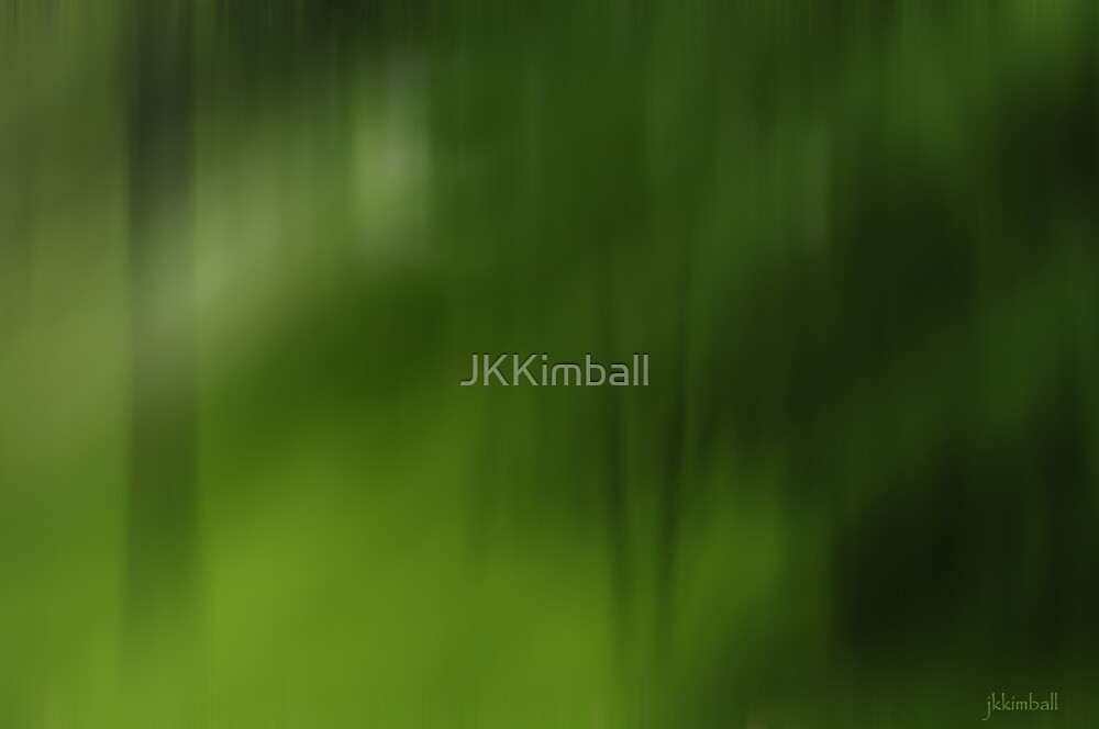 Light in The Forest by JKKimball