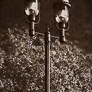 Wrought Iron Street Lamps, Brocade, Sepia, Vintage, Antique Look by PhotosByTrish