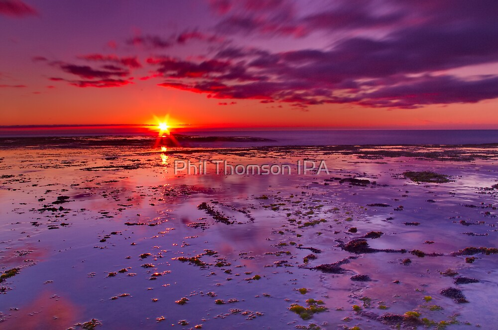 """Shimmering At Sunrise"" by Phil Thomson IPA"