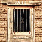 Western Jail House Door by Bo Insogna