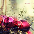 Merry Christmas by smilyjay