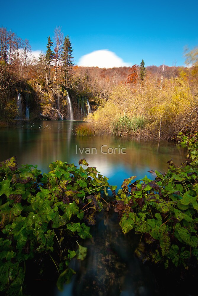 water all around by Ivan Coric