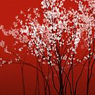 Cherry Blossom - red background by Jarede Schmetterer