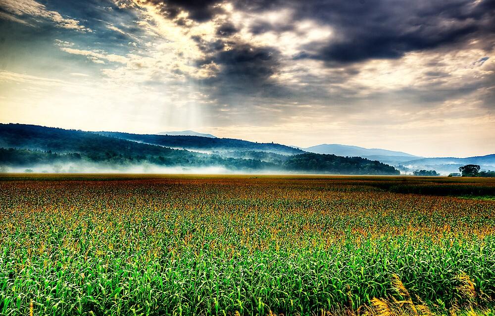 Lamoille Valley by IraMusty
