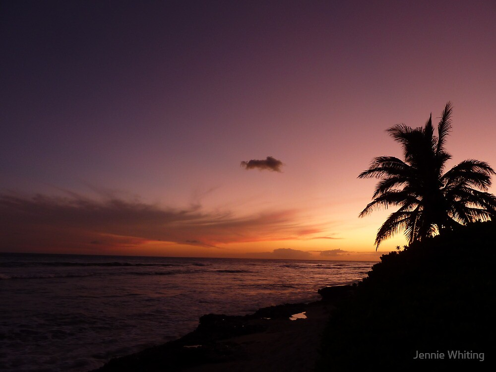 Sunset in Hawaii by Jennie Whiting