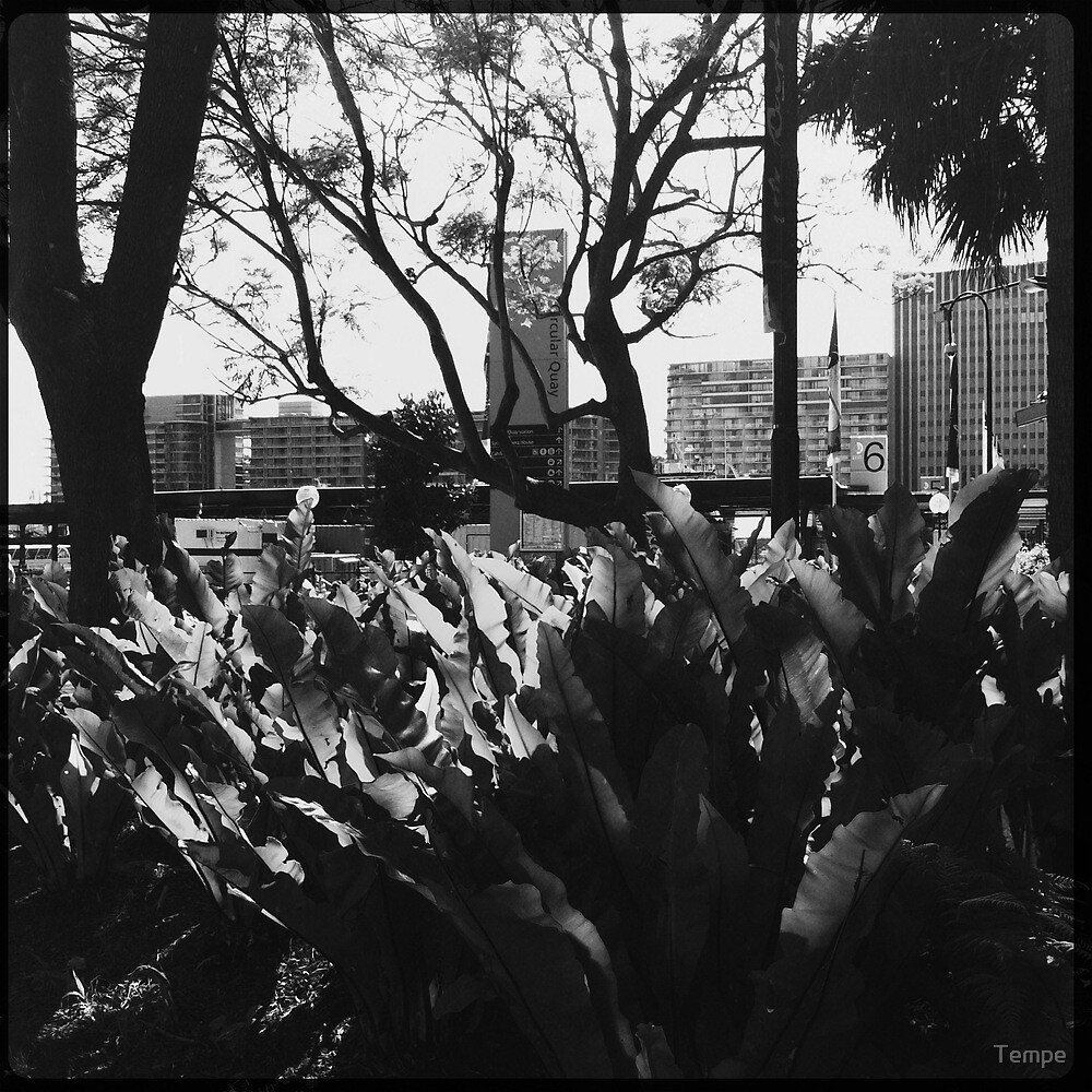 hipstermatic by Tempe