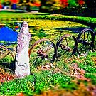 Rustic Wheels with Spokes Fence, Hyper Realism, Color by PhotosByTrish
