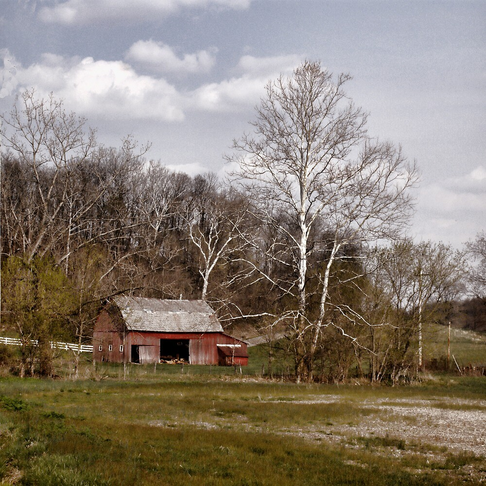 Red Barn White Trees by Jack Hunt