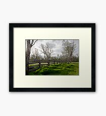 Barmah Muster Yards Framed Print