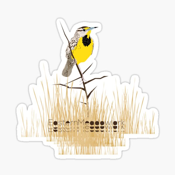 Eastern Meadowlark Sticker