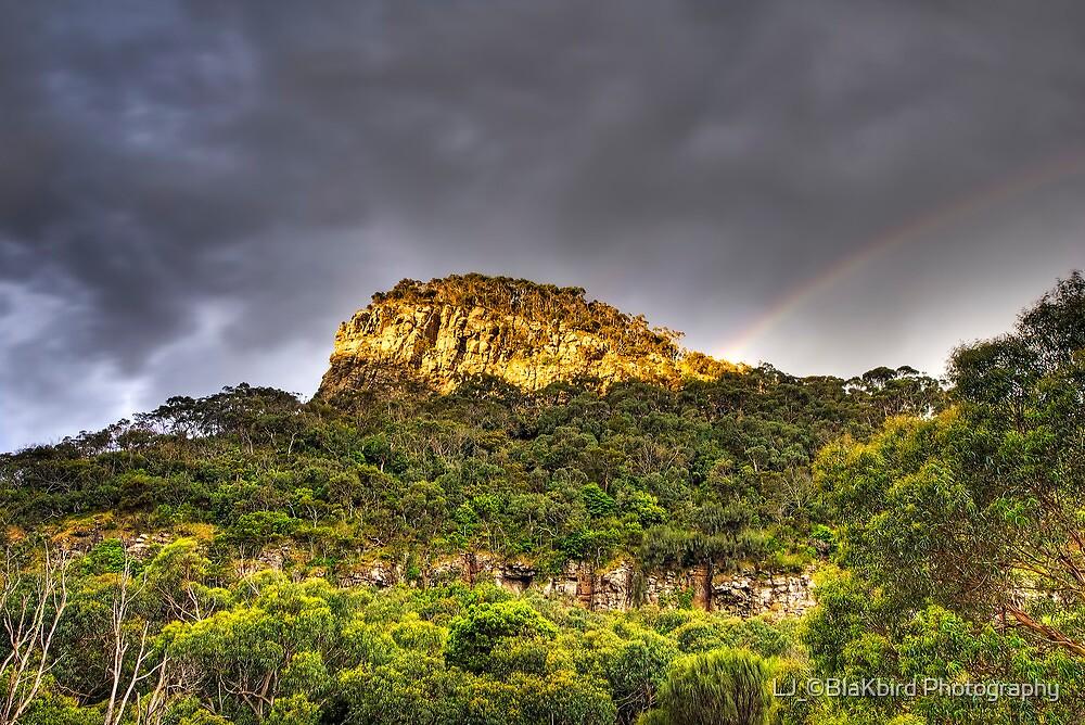 Golden Hour Rainbow by LJ_©BlaKbird Photography