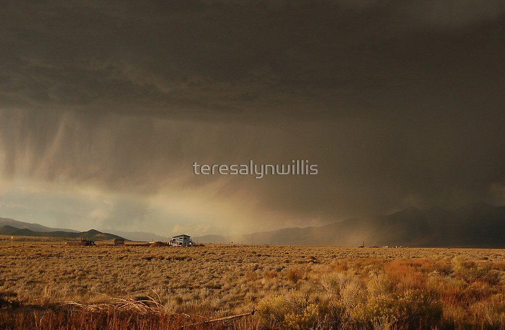 Storm a rolling by teresalynwillis
