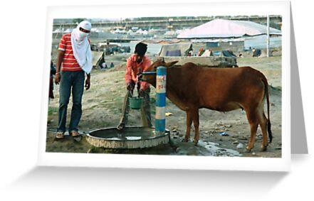 Water by Dr. Harmeet Singh
