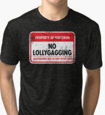 Whiterun Municipal Ordinance Tri-blend T-Shirt