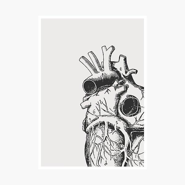 Anatomical Heart • Large Print • Goth Art Photographic Print