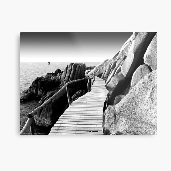 Staggering Wooden Path in Black and White Metal Print