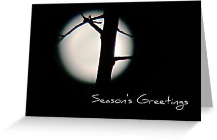 Seasons Greetings - Greeting Card 5 by Scott Mitchell