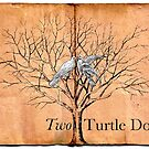 Two Turtle Doves by babibell