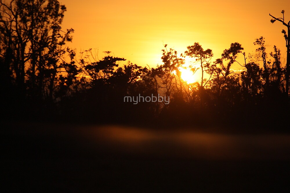 golden sunrise by myhobby