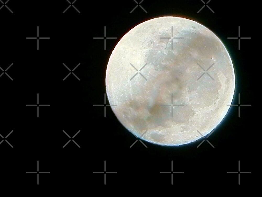 Perfect Moon by Scott Mitchell