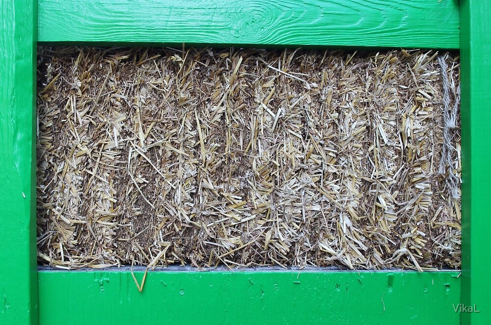Hay in a green wooden container by VikaL