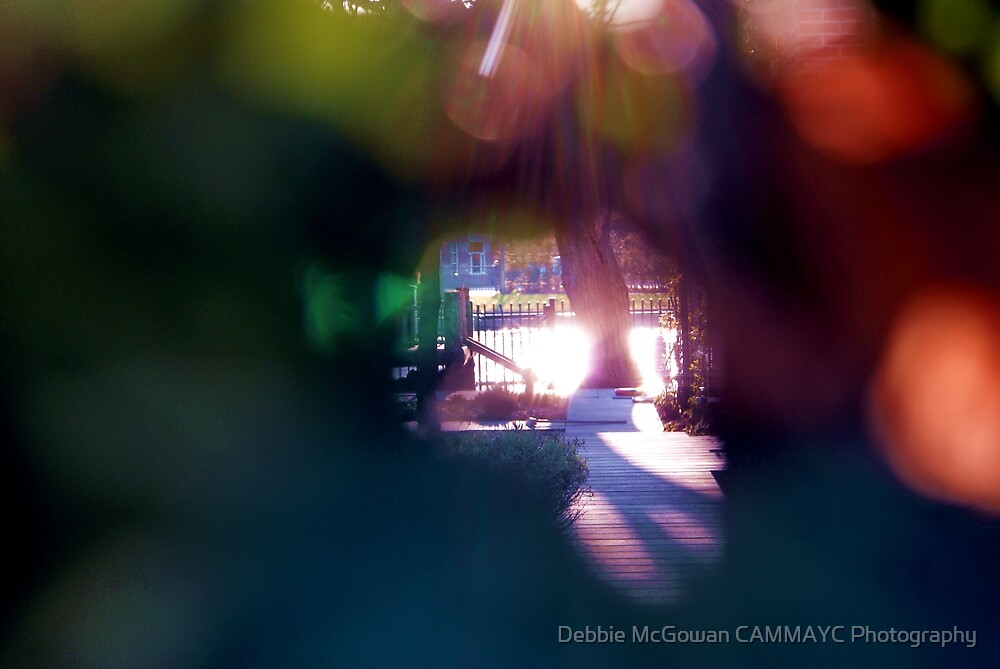 Through the peep hole! by Debbie McGowan CAMMAYC Photography