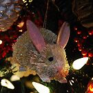 Little Christmas Bunny by Marjorie Wallace
