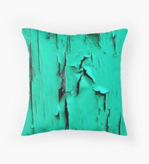Back to the past..... Throw Pillow