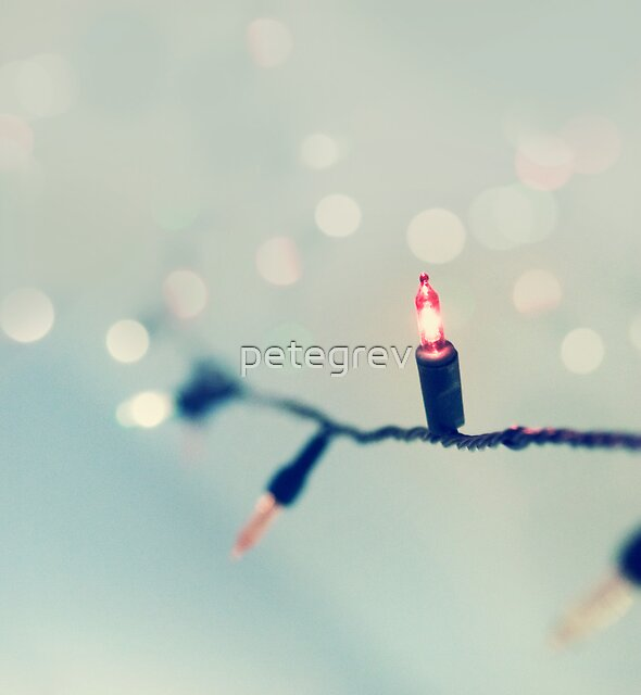 Day 156 - 13th December 2011 by petegrev