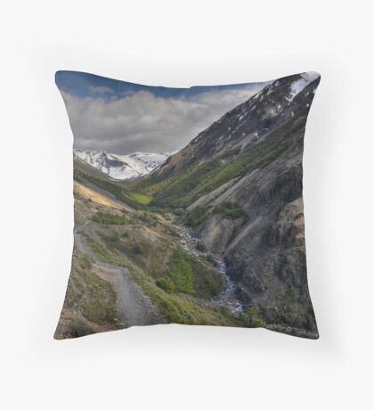 The Valley of Torres del Paine Throw Pillow