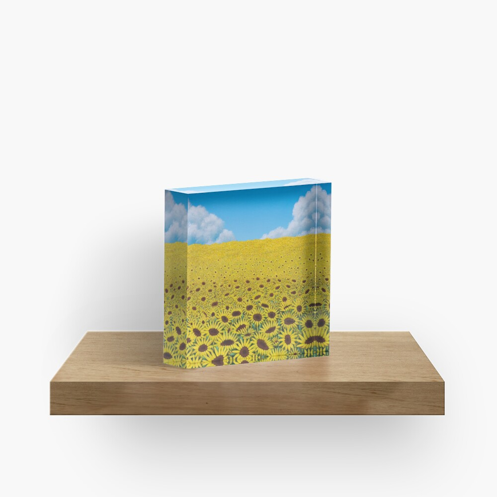 Illusions Acrylic Block
