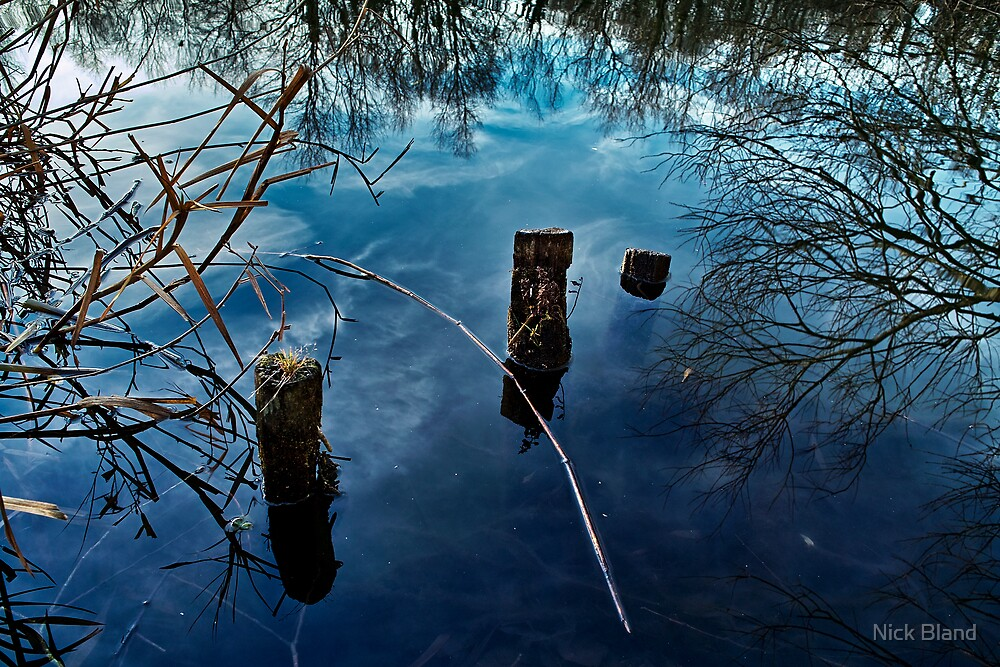 On Reflection by Nick Bland