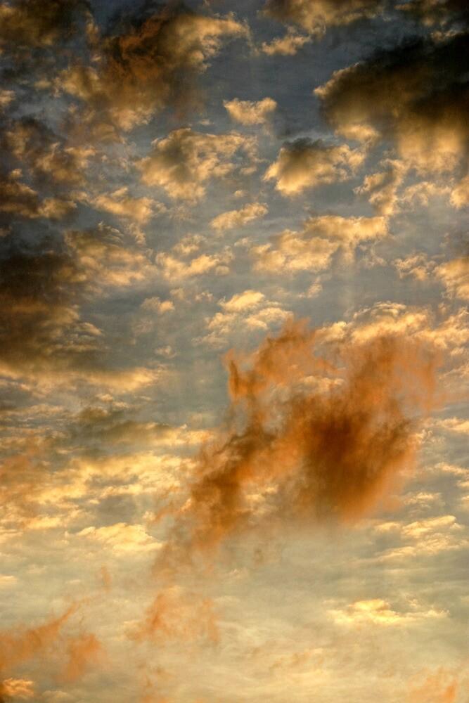 Cloud 20080629-234 by Carolyn  Fletcher