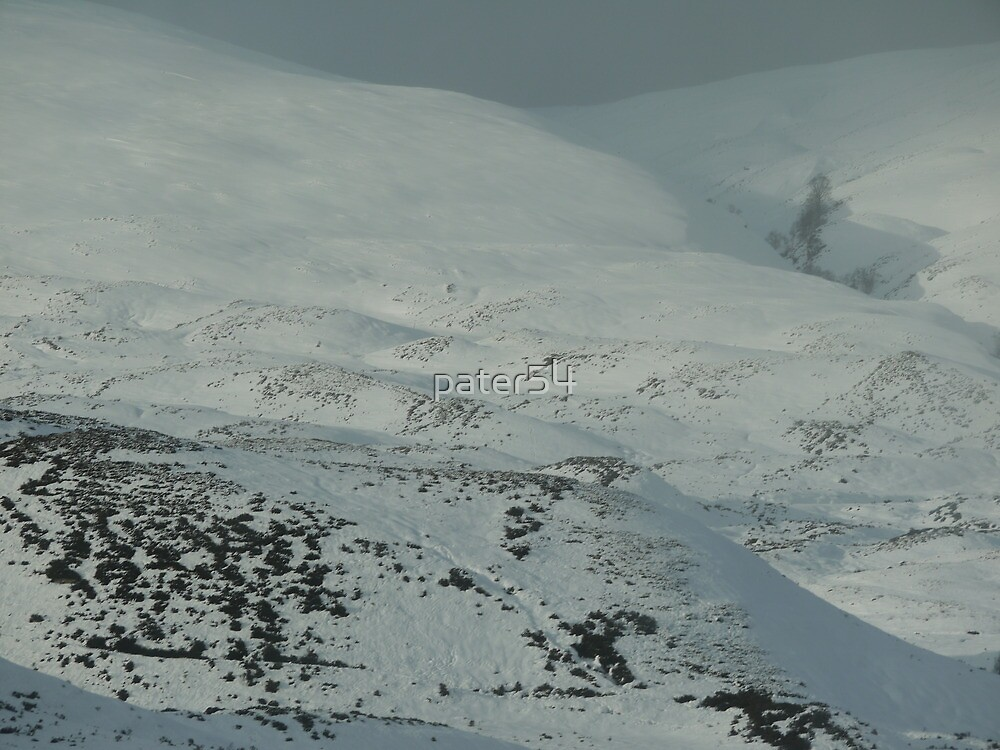 sunny snowy hills by pater54