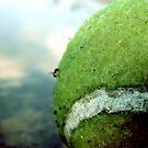 An Ant Circus by garamer