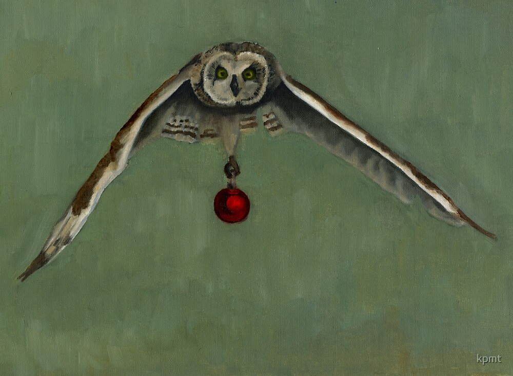 Flying Owl with Ornament by kpmt
