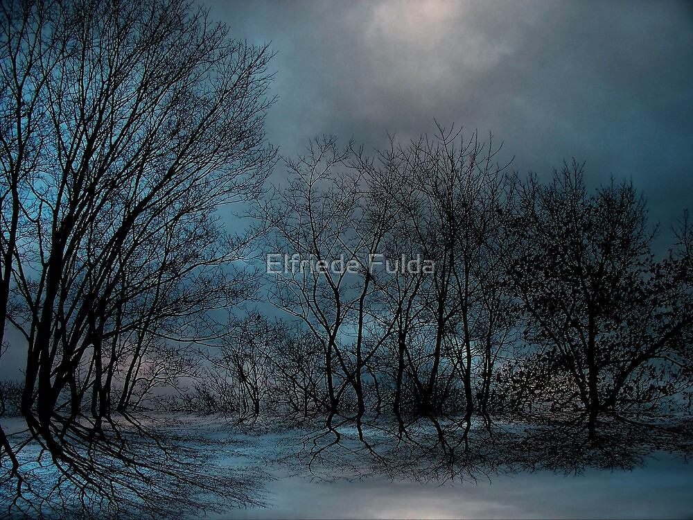 Moonlight ! by Elfriede Fulda