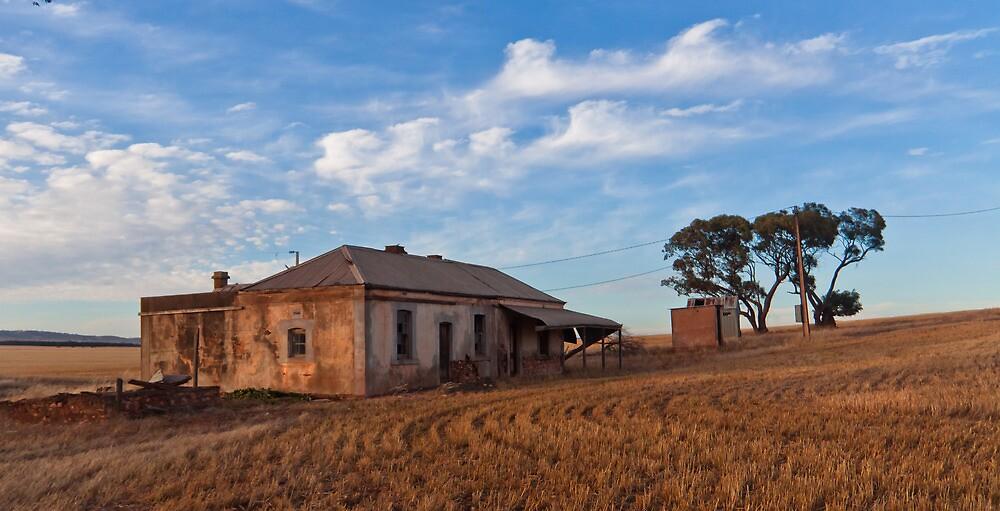 Robertstown Homestead Ruin by pablosvista2