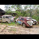 VW Graveyard by Bami