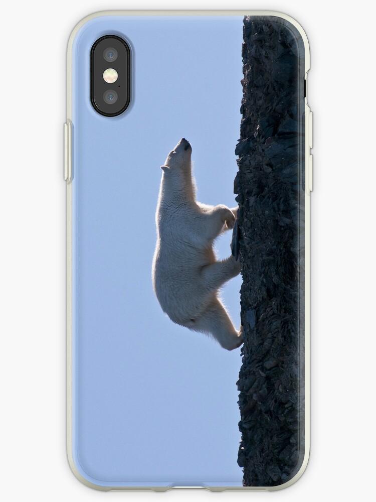 Polar Bear iPhone case by Rosie Appleton
