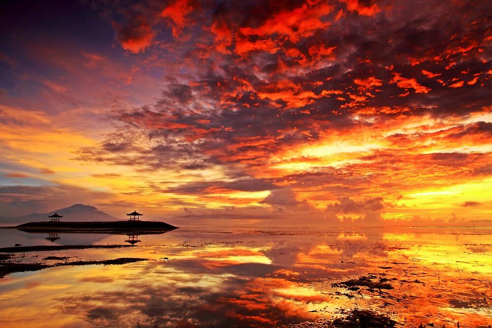 morning glory by sukandia